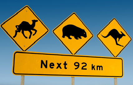 Road Hazards in Australia